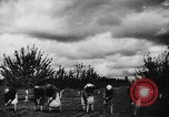Image of collective farms Ukraine, 1943, second 22 stock footage video 65675071391
