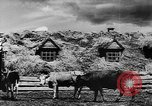 Image of collective farms Ukraine, 1943, second 31 stock footage video 65675071391