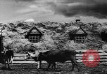 Image of collective farms Ukraine, 1943, second 33 stock footage video 65675071391