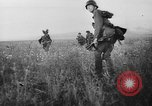 Image of German infantry Soviet Union, 1943, second 37 stock footage video 65675071393