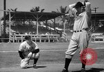 Image of Philadelphia Phillies Miami Beach Florida USA, 1941, second 44 stock footage video 65675071399