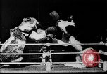 Image of Boxing cats West Orange New Jersey USA, 1894, second 17 stock footage video 65675071490