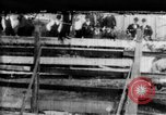 Image of Bucking Bronco West Orange New Jersey USA, 1894, second 1 stock footage video 65675071499