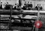 Image of Bucking Bronco West Orange New Jersey USA, 1894, second 2 stock footage video 65675071499
