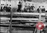 Image of Bucking Bronco West Orange New Jersey USA, 1894, second 10 stock footage video 65675071499