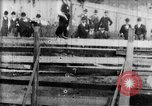 Image of Bucking Bronco West Orange New Jersey USA, 1894, second 11 stock footage video 65675071499
