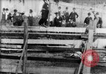 Image of Bucking Bronco West Orange New Jersey USA, 1894, second 12 stock footage video 65675071499