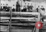 Image of Bucking Bronco West Orange New Jersey USA, 1894, second 16 stock footage video 65675071499