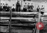 Image of Bucking Bronco West Orange New Jersey USA, 1894, second 17 stock footage video 65675071499