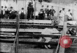 Image of Bucking Bronco West Orange New Jersey USA, 1894, second 18 stock footage video 65675071499