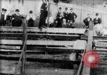 Image of Bucking Bronco West Orange New Jersey USA, 1894, second 20 stock footage video 65675071499