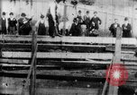 Image of Bucking Bronco West Orange New Jersey USA, 1894, second 22 stock footage video 65675071499