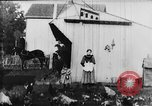 Image of Farmyard scene New Jersey United States USA, 1896, second 19 stock footage video 65675071515