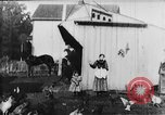 Image of Farmyard scene New Jersey United States USA, 1896, second 25 stock footage video 65675071515