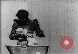 Image of African American mother New Jersey United States USA, 1896, second 20 stock footage video 65675071516