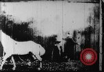 Image of Barn on fire New Jersey United States USA, 1896, second 7 stock footage video 65675071517