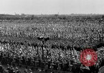 Image of German troops marching on a rough field Germany, 1933, second 45 stock footage video 65675071553