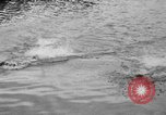 Image of swimming race Hawaii USA, 1916, second 17 stock footage video 65675071572