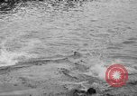 Image of swimming race Hawaii USA, 1916, second 19 stock footage video 65675071572