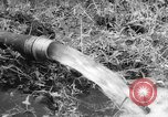 Image of drought Japan, 1958, second 19 stock footage video 65675071621