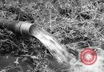 Image of drought Japan, 1958, second 20 stock footage video 65675071621