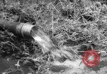 Image of drought Japan, 1958, second 21 stock footage video 65675071621
