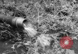 Image of drought Japan, 1958, second 22 stock footage video 65675071621