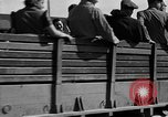 Image of liberated orphan children from Buchenwald Concentration Camp Buchenwald Germany, 1945, second 7 stock footage video 65675071632