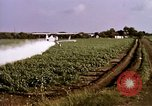 Image of agriculture United States USA, 1956, second 44 stock footage video 65675071648
