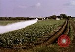 Image of agriculture United States USA, 1956, second 45 stock footage video 65675071648