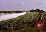 Image of agriculture United States USA, 1956, second 46 stock footage video 65675071648