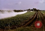 Image of agriculture United States USA, 1956, second 48 stock footage video 65675071648
