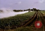 Image of agriculture United States USA, 1956, second 49 stock footage video 65675071648