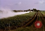 Image of agriculture United States USA, 1956, second 50 stock footage video 65675071648
