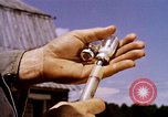 Image of agriculture United States USA, 1956, second 55 stock footage video 65675071650