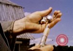 Image of agriculture United States USA, 1956, second 58 stock footage video 65675071650