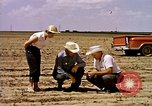 Image of agriculture United States USA, 1956, second 11 stock footage video 65675071651