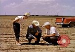 Image of agriculture United States USA, 1956, second 13 stock footage video 65675071651