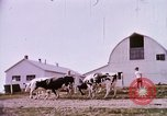 Image of agriculture United States USA, 1956, second 56 stock footage video 65675071651