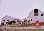 Image of agriculture United States USA, 1956, second 57 stock footage video 65675071651
