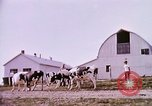 Image of agriculture United States USA, 1956, second 58 stock footage video 65675071651