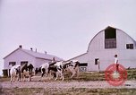 Image of agriculture United States USA, 1956, second 59 stock footage video 65675071651