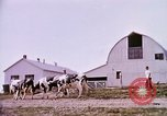 Image of agriculture United States USA, 1956, second 60 stock footage video 65675071651