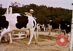 Image of agriculture United States USA, 1956, second 62 stock footage video 65675071651