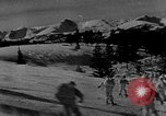 Image of weasel United States USA, 1943, second 35 stock footage video 65675071681