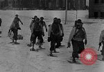 Image of weasel United States USA, 1943, second 38 stock footage video 65675071681
