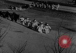 Image of weasel United States USA, 1943, second 39 stock footage video 65675071681