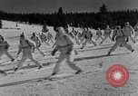 Image of weasel United States USA, 1943, second 40 stock footage video 65675071681