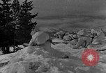 Image of weasel United States USA, 1943, second 43 stock footage video 65675071681
