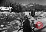 Image of weasel United States USA, 1943, second 47 stock footage video 65675071681